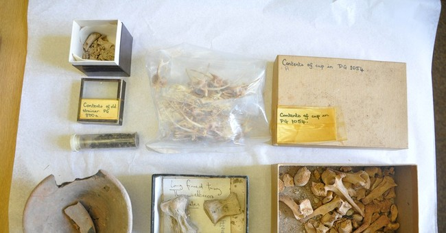 Items from ancient Sumerian city found in cupboard