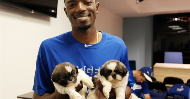 Dodgers count on puppy power for All-Star votes