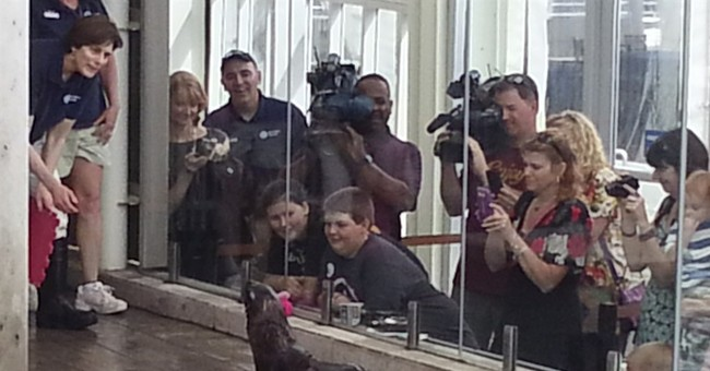 Alaska boy meets seal he named in school contest