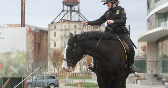 Slimmed-down Oregon police horse collars suspect