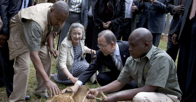 UN chief 'adopts' lion cub in Kenya