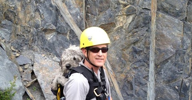 Ranger plucks dog from cliff in Alaska park