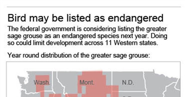 Senate majority could rest on the sage grouse