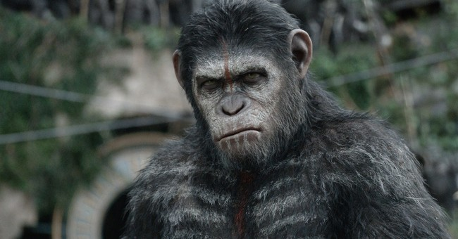 Go ape: Find your inner primate in 4 easy steps