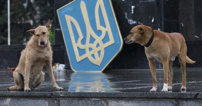 Slovyansk struggles back after rebels are routed