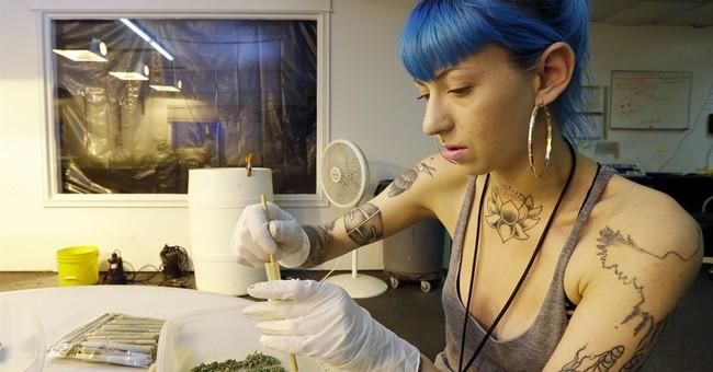 AP PHOTOS: How marijuana goes from garden to store