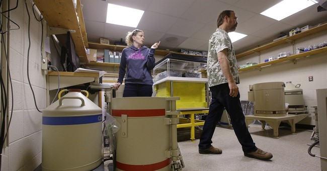 Scientists turn to public to help pay for research