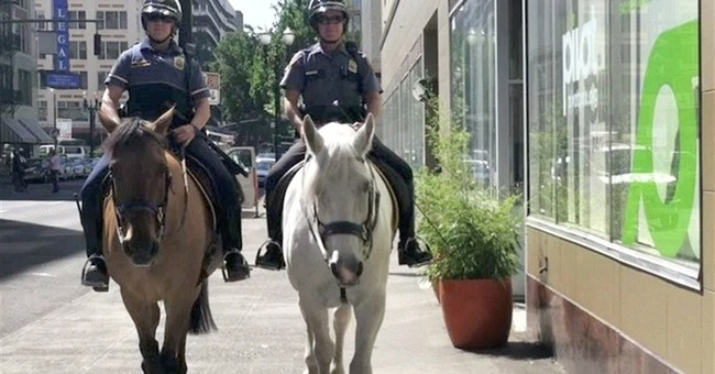 Police arrest man accused of kicking police horse