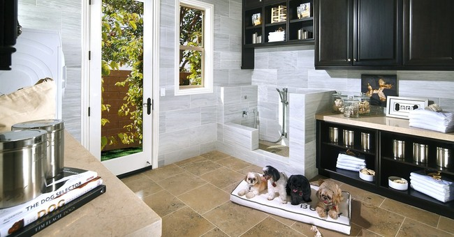 Correction: Pets-Sweet Dog Suites story