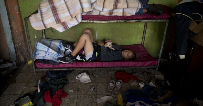 Owner of raided Mexico shelter freed, no charges
