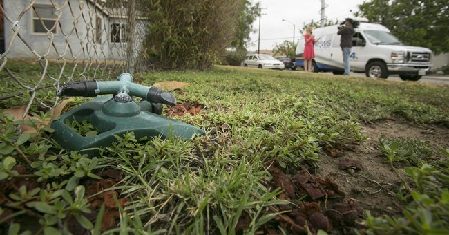 California drought doesn't end brown lawn warnings