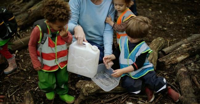 Forest nursery school in London lets kids explore