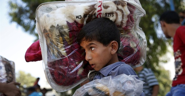 Casualty numbers raise questions about Gaza war