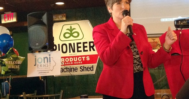 Ernst back from military training to Senate race