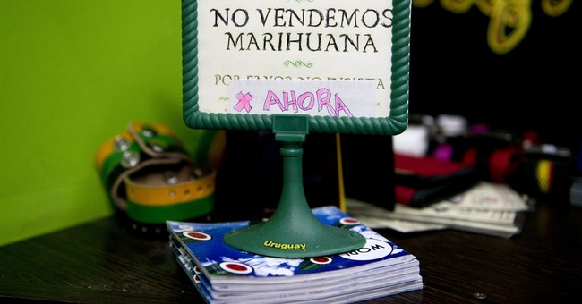 Uruguayan pot marketplace may go up in smoke