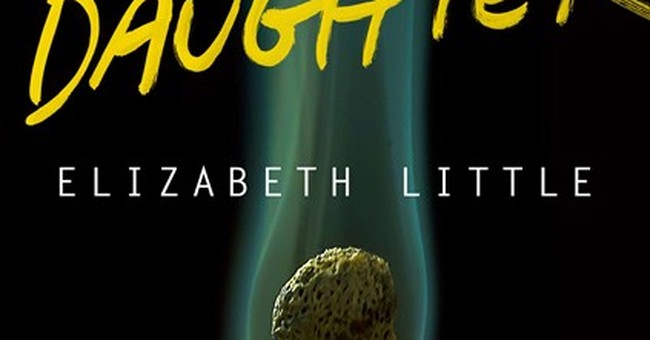 Elizabeth Little's 'Dear Daughter' is engrossing
