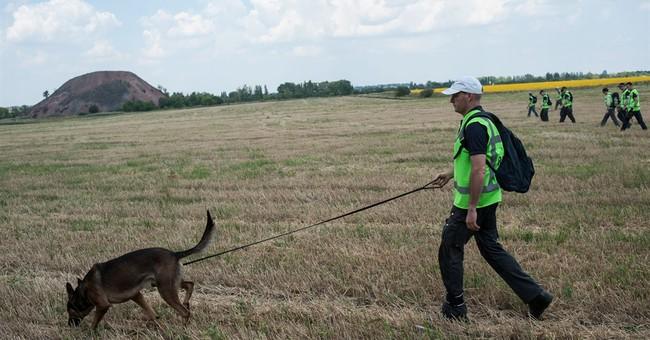 Dutch premier halts search for Ukraine victims