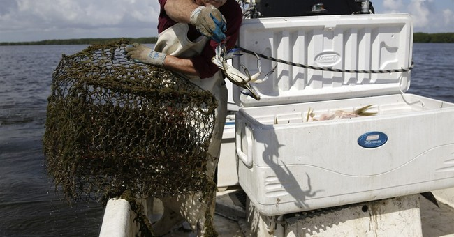 National park near Miami may ban fish harvests