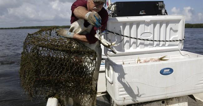 National park near Miami may ban fish harvests