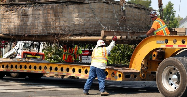 Rare California redwood saved from ax is replanted