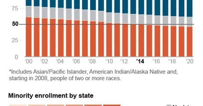 Racial, ethnic look at US public school students