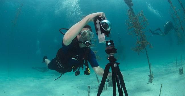 'Street view' goes undersea to map reefs, wonders