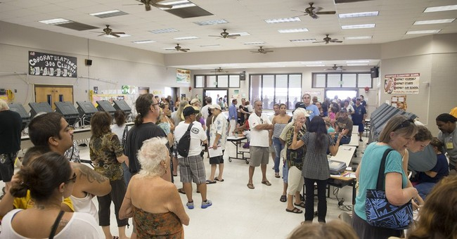 Schatz wins Democratic Hawaii US Senate primary