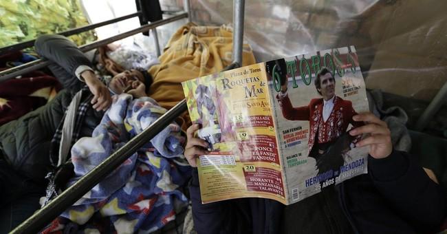 Novice matadors' hunger strike over bullfight ban