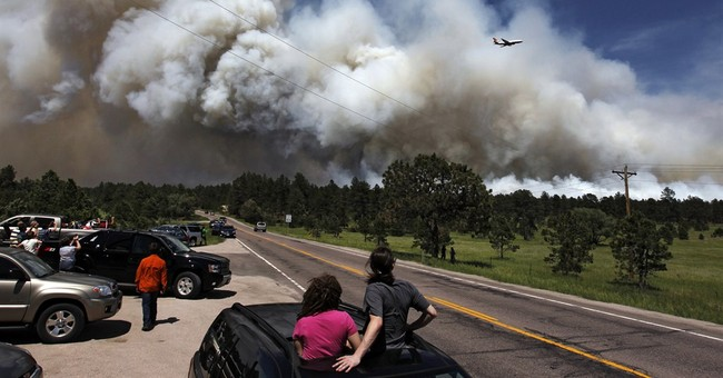 Colorado buys fire-spotting planes to battle fires