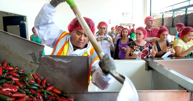 Hot-sauce plant's tour offers whiff of excitement