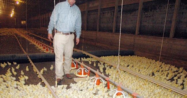 Farmers, schools scramble for propane amid freeze