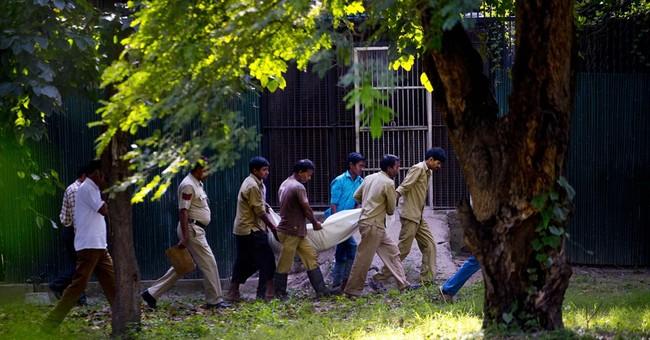 Indian zoo: Tiger kills man who climbed into moat