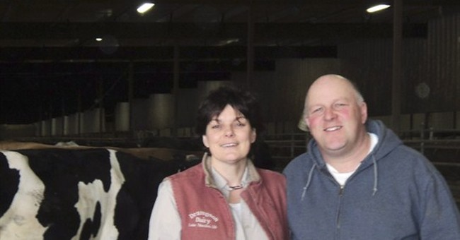 Funds through divisive visa system helped SD dairy