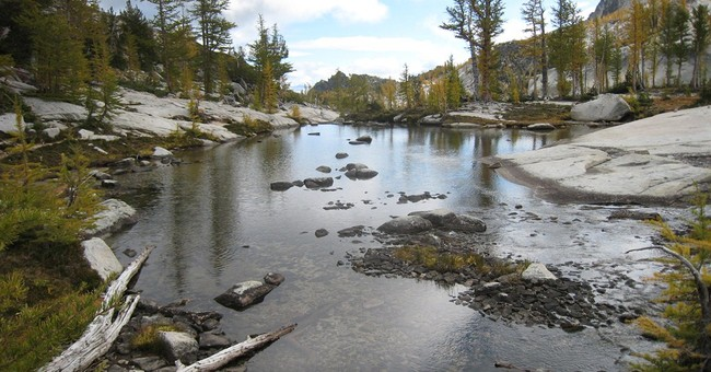 Forest Service says media doesn't need permit