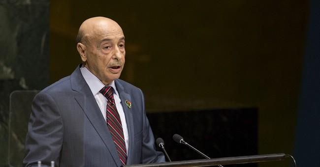 Libya pleads for help in battling terror groups