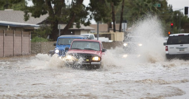 Southwest storms knock over trees, drench Phoenix