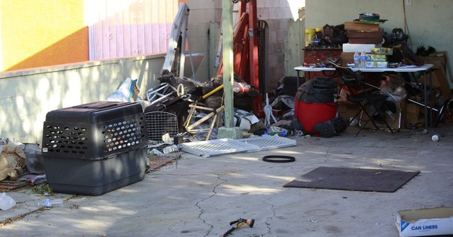 45 dogs dead, 48 alive after North Las Vegas fire