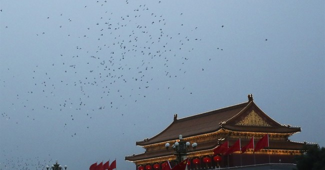 Reports: China body-searched 10,000 pigeons