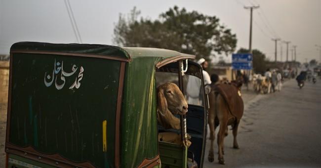 Suicide attack, bomb blast in Pakistan kill 10