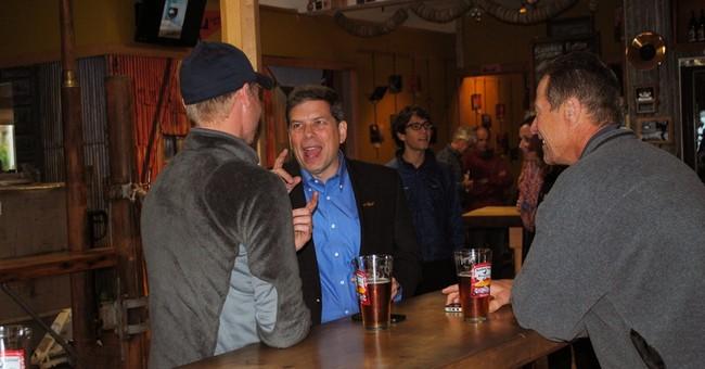 Alaska's Begich battles midterm partisan undertow