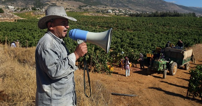 Syrians, Lebanese produce wine in ferment of war