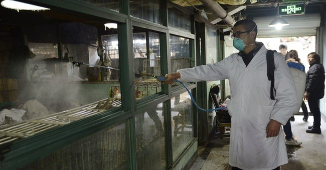 China halts poultry trading after new H7N9 cases
