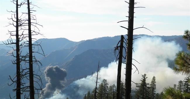 California pilot dies in crash fighting wildfire