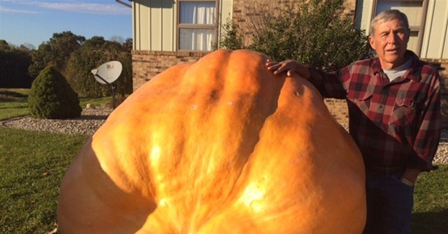 Indiana man grows giant pumpkins in his backyard