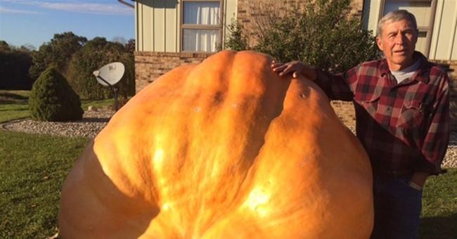 Indiana man grows giant pumpkins in his backyard