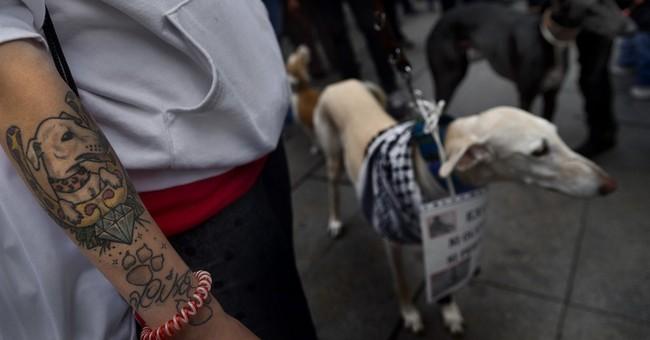 Ebola: 3 more people under observation in Spain