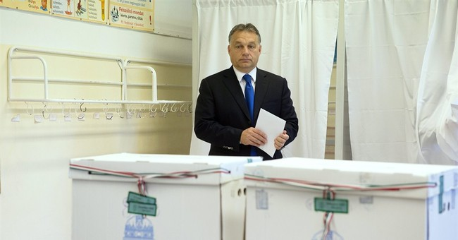 Hungary's Fidesz widely dominates municipal voting