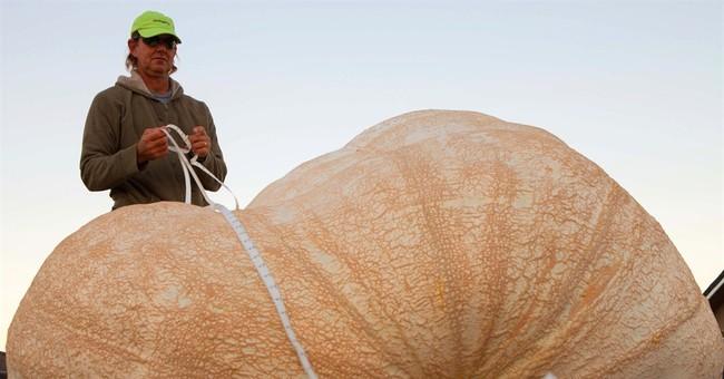 Plumpest pumpkin: 2,058-pound gourd sets record