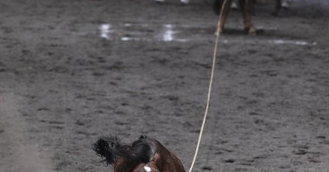 Mexico celebrates its charro horse tradition