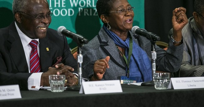 African leaders: Ebola could lead to food crisis